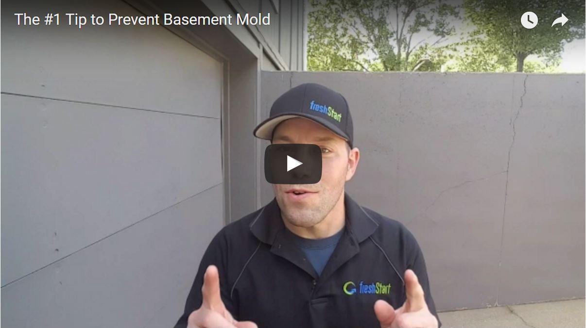 prevent basement mold